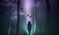 Dark Lambency (B) – Spectra