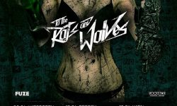 To the Rats and Wolves – Spring Bangers European Tour 2017