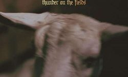 Demon Head (DK) – Thunder on The Fields