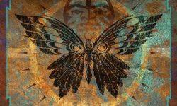 Steve Walsh (USA) – Black Butterfly