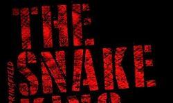 Rick Springfield (USA) – The Snake King